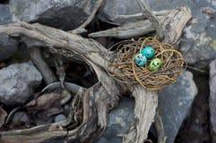 Χρωματισμένα αυγά ορτυκιών σε μια εκλεκτική εστίαση φωλιών Στοκ Φωτογραφίες