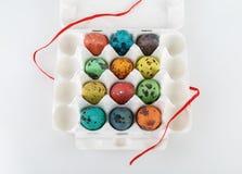 Χρωματισμένα αυγά ορτυκιών Στοκ εικόνα με δικαίωμα ελεύθερης χρήσης