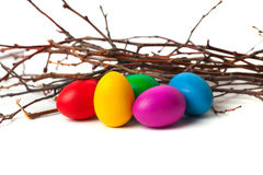 Χρωματισμένα αυγά Πάσχας από τους κλάδους Στοκ φωτογραφία με δικαίωμα ελεύθερης χρήσης