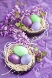 Χρωματισμένα αυγά Πάσχας στις φωλιές Στοκ Φωτογραφία