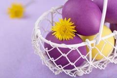 Χρωματισμένα αυγά σε ένα άσπρο καλάθι στο ιώδες υπόβαθρο Στοκ Φωτογραφία