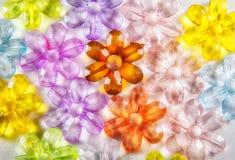 Χρωματισμένα διαφανή λουλούδια γυαλιού Στοκ εικόνα με δικαίωμα ελεύθερης χρήσης