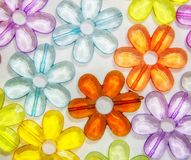 Χρωματισμένα διαφανή λουλούδια γυαλιού Στοκ εικόνες με δικαίωμα ελεύθερης χρήσης