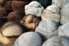 Χρωματισμένα καπέλα γουνών Στοκ Φωτογραφίες