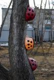 Χρωματισμένα κράνη κατασκευής στο ladybug στοκ εικόνες