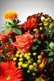 χρωματισμένα λουλούδια στοκ φωτογραφία