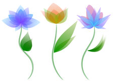 Χρωματισμένα λουλούδια Στοκ Εικόνα