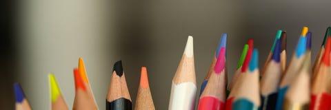 Χρωματισμένα μολύβια πολλά διαφορετική εκπαιδευτική έννοια απόψεων στοκ εικόνα