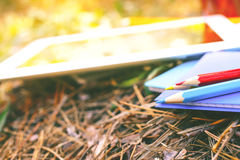 Χρωματισμένα μολύβια με το σημειωματάριο και την ταμπλέτα στο πάρκο στοκ εικόνες