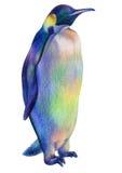 Χρωματισμένα μολύβια που σύρουν το υπερήφανο βασιλικό penguin ουράνιων τόξων απεικόνιση αποθεμάτων