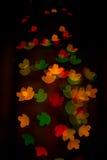 Χρωματισμένα λουλούδια Στοκ Εικόνες