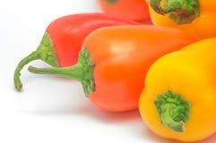 Χρωματισμένα πιπέρια 14 Στοκ Εικόνες