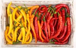χρωματισμένα πιπέρια Στοκ φωτογραφία με δικαίωμα ελεύθερης χρήσης