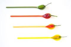 χρωματισμένα πολυ πιπέρια Στοκ Εικόνα