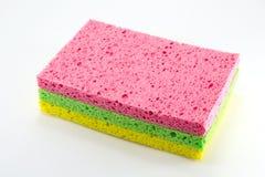 χρωματισμένα σφουγγάρια Στοκ Εικόνες