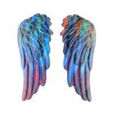 Χρωματισμένα φτερά ασβεστοκονιάματος Στοκ φωτογραφία με δικαίωμα ελεύθερης χρήσης