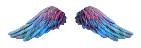 Χρωματισμένα φτερά ασβεστοκονιάματος Στοκ εικόνα με δικαίωμα ελεύθερης χρήσης