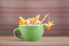 Χρωματισμένα φλυτζάνια με το α και daffodils τον τρύγο αναδρομικούς στοκ φωτογραφίες