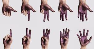 Χρωματισμένα χέρια καθορισμένα Στοκ εικόνα με δικαίωμα ελεύθερης χρήσης
