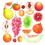Χρωματισμένα χέρι φρούτα watercolor καθορισμένα ελεύθερη απεικόνιση δικαιώματος