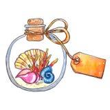 Χρωματισμένα χέρι ωκεάνια στοιχεία watercolor ελεύθερη απεικόνιση δικαιώματος