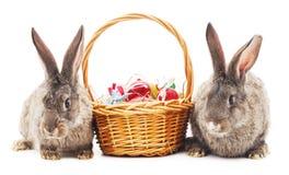 χρωματισμένα bunnies αυγά Πάσχας Στοκ φωτογραφία με δικαίωμα ελεύθερης χρήσης