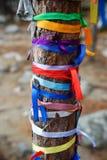 Χρωματισμένες κορδέλλες στο ιερό δέντρο Zalaal Κοντά στην πηγή μεταλλικού νερού Arshan Ρωσία Στοκ εικόνες με δικαίωμα ελεύθερης χρήσης