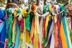 Χρωματισμένες κορδέλλες στο ιερό δέντρο Zalaal Κοντά στην πηγή μεταλλικού νερού Arshan Ρωσία Στοκ Φωτογραφίες