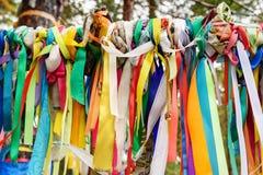 Χρωματισμένες κορδέλλες στο ιερό δέντρο Zalaal Κοντά στην πηγή μεταλλικού νερού Arshan Ρωσία Στοκ Εικόνες