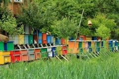 Χρωματισμένες ξύλινες κυψέλες Στοκ Φωτογραφίες
