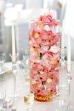 Χρωματισμένες οι σολομός (ανοικτό ροζ) ορχιδέες σε ένα γυαλί νερού διακοσμούν επάνω Στοκ Φωτογραφία
