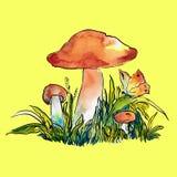 Χρωματισμένη απεικόνιση σκίτσων των μανιταριών Στοκ Εικόνα
