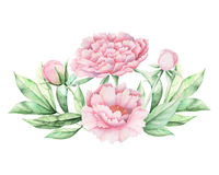 Χρωματισμένη χέρι ανθοδέσμη λουλουδιών Watercolor που απομονώνεται στο άσπρο υπόβαθρο απεικόνιση αποθεμάτων