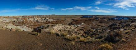 Χρωματισμένη χειμώνας έρημος στην Αριζόνα Στοκ εικόνα με δικαίωμα ελεύθερης χρήσης