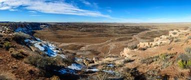 Χρωματισμένη χειμώνας έρημος στην Αριζόνα Στοκ Φωτογραφίες