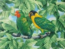 χρωματισμένοι παπαγάλοι &delt Στοκ Εικόνες