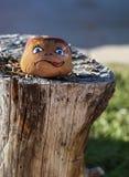 Χρωματισμένος βράχος με το χαριτωμένο συρμένο πρόσωπο Στοκ Φωτογραφίες