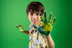 χρωματισμένος φοίνικας Στοκ Εικόνα