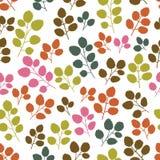 Χρωματισμένο άνευ ραφής σχέδιο με το φύλλο Στοκ Φωτογραφία