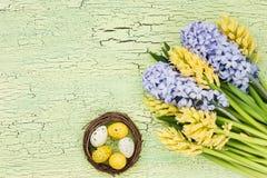 χρωματισμένο ανασκόπηση Πάσχας αυγών eps8 διάνυσμα τουλιπών μορφής κόκκινο Λουλούδια άνοιξη και αυγά Πάσχας στο πράσινο υπόβαθρο  Στοκ εικόνες με δικαίωμα ελεύθερης χρήσης