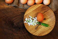 χρωματισμένο ανασκόπηση Πάσχας αυγών eps8 διάνυσμα τουλιπών μορφής κόκκινο Αγροτικός ξύλινος πίνακας με το πιάτο, το αυγό, τα λου Στοκ Φωτογραφίες