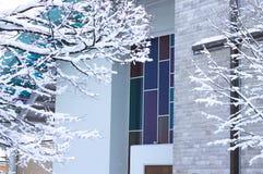 Χρωματισμένο γυαλί παραθύρων μιας εκκλησίας - χιονώδες crucifix Στοκ Εικόνες