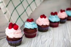 Χρωματισμένο γλυκό Cupcakes Στοκ εικόνα με δικαίωμα ελεύθερης χρήσης