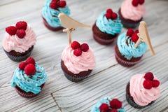 Χρωματισμένο γλυκό Cupcakes Στοκ Εικόνες