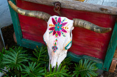 Χρωματισμένο κρανίο αγελάδων Στοκ Εικόνες