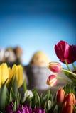 χρωματισμένο κύκλος Πάσχας διάνυσμα θέματος κειμένων αυγών eps10 διαστημικό σας Στοκ Εικόνες