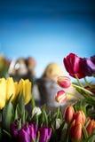 χρωματισμένο κύκλος Πάσχας διάνυσμα θέματος κειμένων αυγών eps10 διαστημικό σας Στοκ Εικόνα