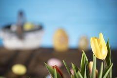 χρωματισμένο κύκλος Πάσχας διάνυσμα θέματος κειμένων αυγών eps10 διαστημικό σας Στοκ φωτογραφίες με δικαίωμα ελεύθερης χρήσης
