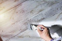 Χρωματισμένο λευκό στο ξύλινο πάτωμα στοκ εικόνες