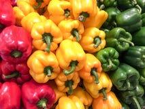 Χρωματισμένο πιπέρι κουδουνιών Στοκ Φωτογραφίες